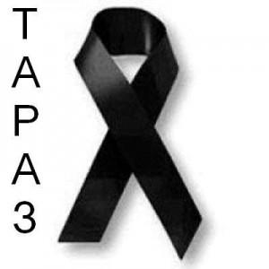 Организаторы теракта в Таразе действовали во имя создания исламского государства