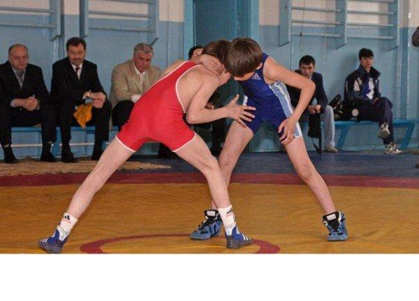 Соревнование по вольной борьбе среди юниоров