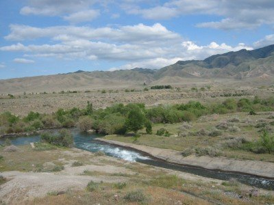 За несколько лет в Южном Казахстане планируется привести в порядок все поливные каналы