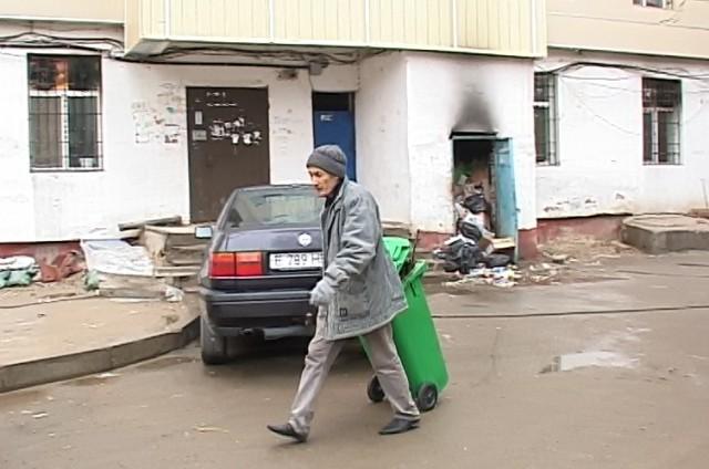 Шымкентцы считают, что администрация города ничего не делает для уничтожения крыс