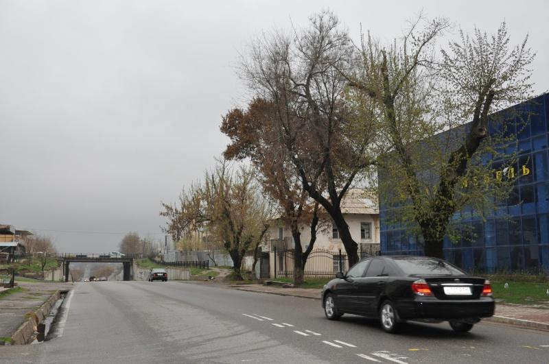Март в Шымкенте