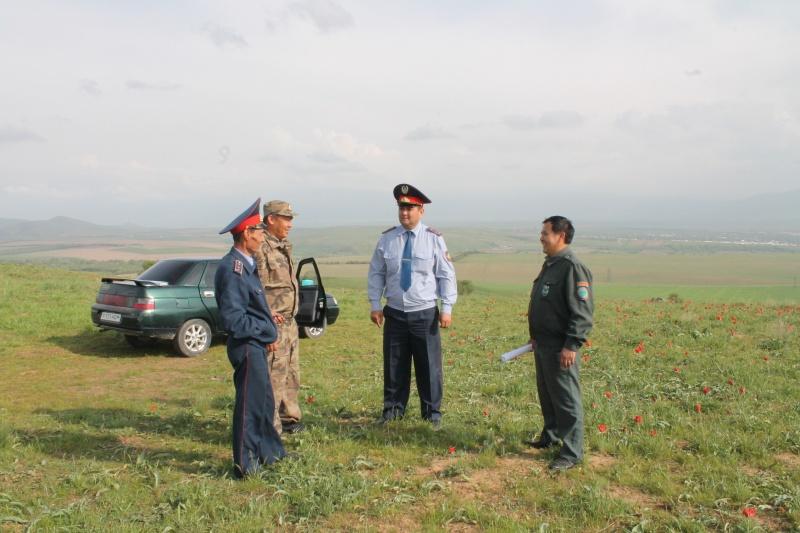 За погубленные тюльпаны в Казахстане предусмотрено уголовное наказание.