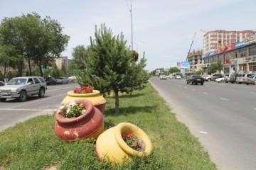 Петуньи по улице Желтоксан
