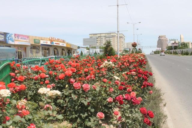 Проспект Кунаева утопает в цветах