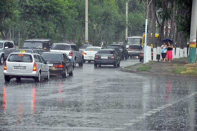 Дождливая, прохладная погода, по данным синоптиков, простоит в нашей области до 3 июля