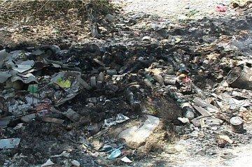 Высокая температура приводит к возгоранию мусора