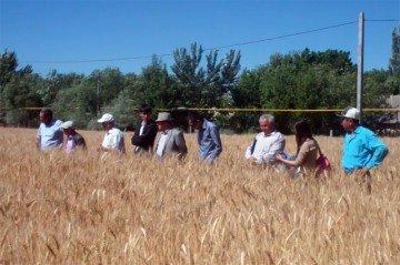 Представителей районных акиматов и отделов сельского хозяйства убеждали внедрять новые технологии и вспоминать забытое старое.
