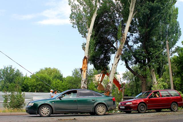 Есть вероятность, что падение может повторится, ведь рядом стоит еще одно дерево, имеющее сильный наклон