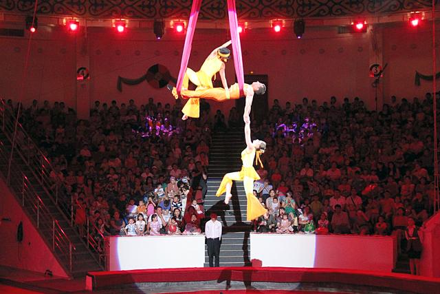 Завораживающее и захватывающее шоу показали, воздушные гимнасты