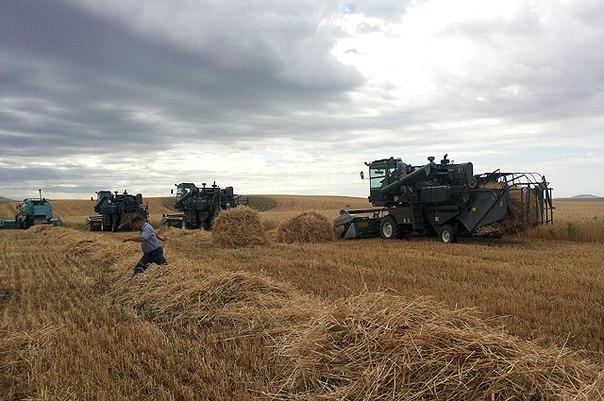 Аграрии готовы к сбору урожая
