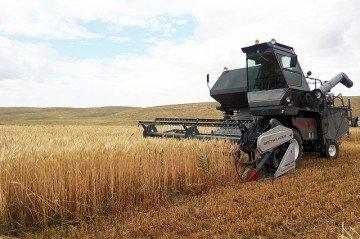 Для южно-казахстанских дехкан появятся новые возможности для развития сельского хозяйства