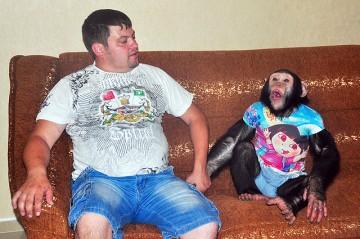 шимпанзе Боб вместе с хозяином Владимиром