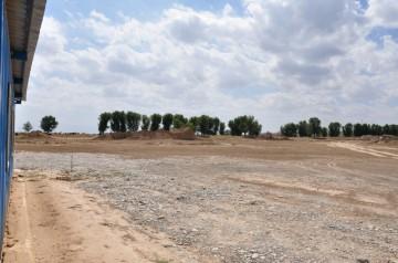 Нарушения земельного законадательства обнаружены в деятельности акимата Шымкента