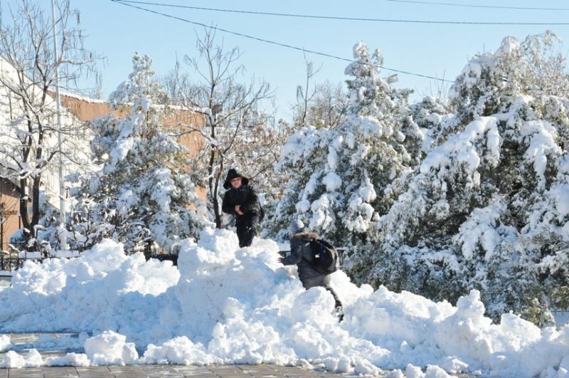 Шымкентский первый снег и его «сюрпризы»
