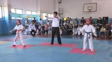 Соревнования по каратэ кекушинкай