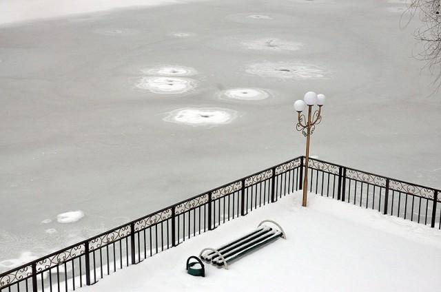 Озеро в дендропарке попало в плен к Деду Морозу