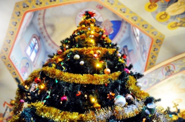 В церкви нарядили вечнозеленую елку - символ вечной жизни