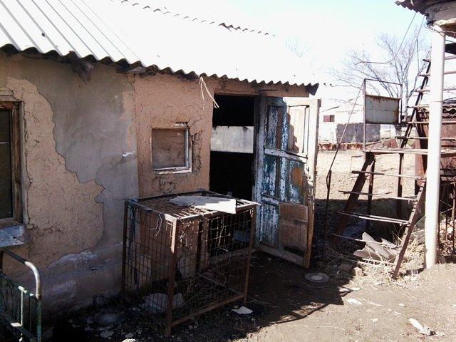 Этот сарай пенсионер снимает в аренду за 1000 тенге в месяц
