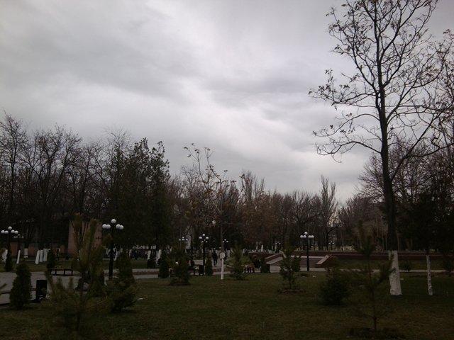 Дожди и грозы ожидают нас в праздничные выходные