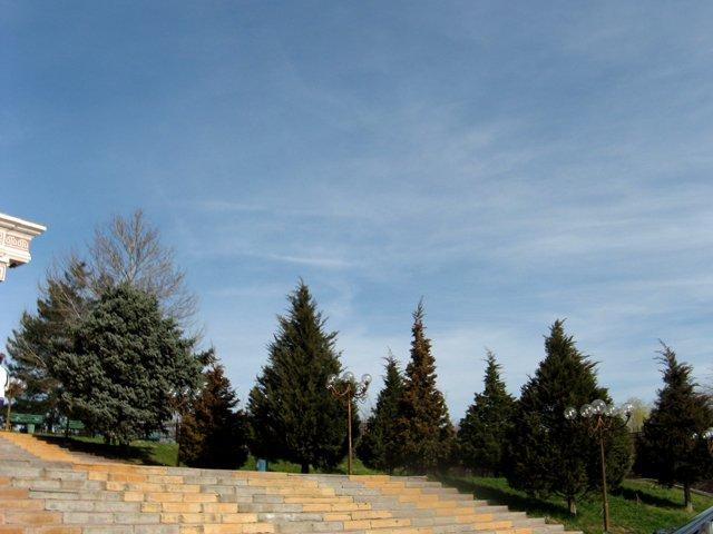 Уже через несколько дней в Шымкенте начнутся заморозки