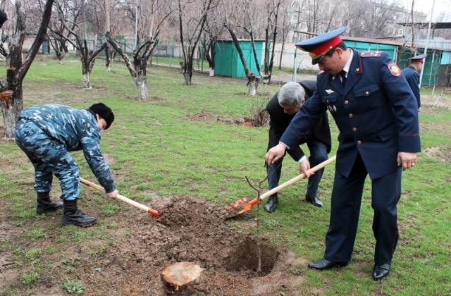 Во главе с руководителем Учебного центра выпускники разных лет высадили деревья в знак преемственности поколений