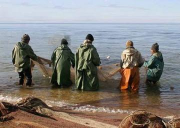 Борьбу с браконьерами ведет инспекция лесного и животного мира ЮКО