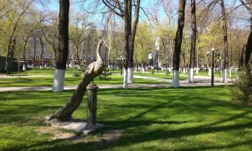 Современные газоны как раз и рассчитаны на то, чтобы люди могли не только прогуливаться по ним, но и отдыхать на зеленой траве в тени деревьев