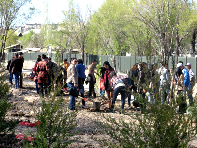 Студенты ВУЗов с удовольствием высаживали и поливали молодые саженцы