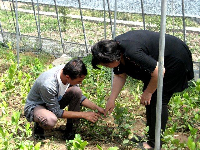 Агрономическим опытом мужчина охотно делится с выпускниками школы предпринимателей