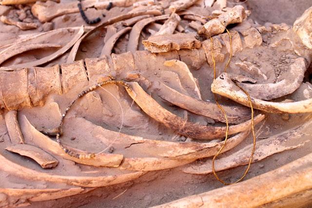 Археологи предполагают, что подобное захоронение относится к племени Сарматов