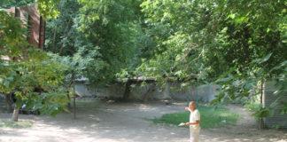 Благоустройство дворов в Шымкенте