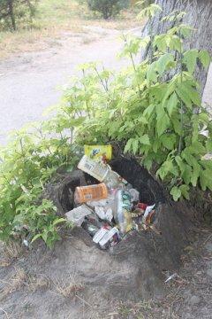 В нашем городе любой предмет может стать урной для мусора