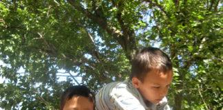 Вместе с детьми горожане не только убирают мусор, но и украшают двор подделками ручной работы
