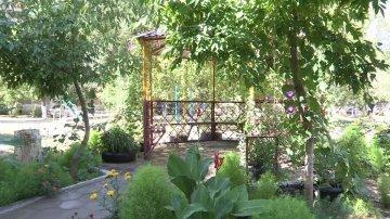 Маленький ботанический сад