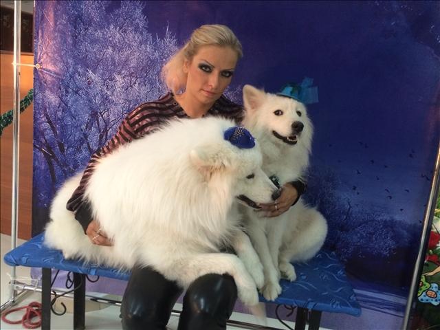 """По словам дрессировщицы Татьяны Мащенко, номер """"Собаки на лошади"""" это единственный в мире обособленный номер с животными"""