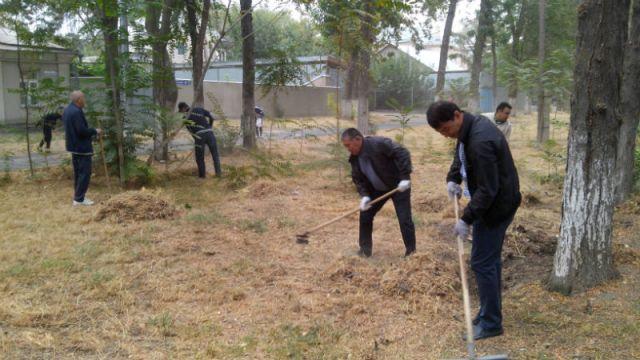 Вениками и граблями вооружились и чиновники