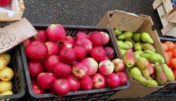На шымкентской сельхозярмарке растут цены продукты