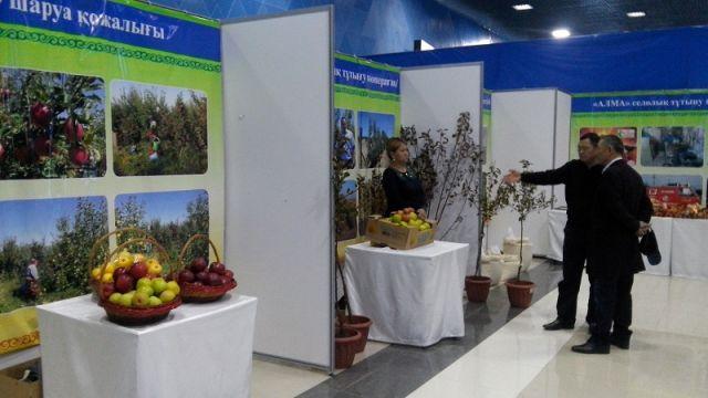 Ежегодная сельскохозяйственная выставка «Золотая осень-2014» показала лучшие достижения среди растениеводов, животноводов, птицеводов и хлопкоробов