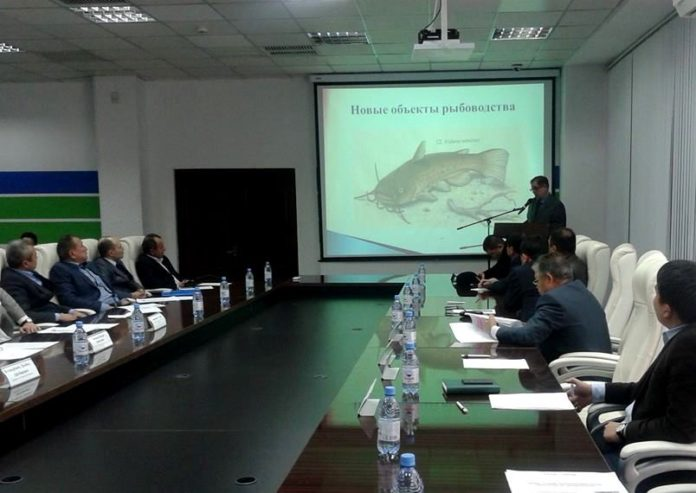 В Шымкенте обсудили перспективы развития рыбного хозяйства в ЮКО