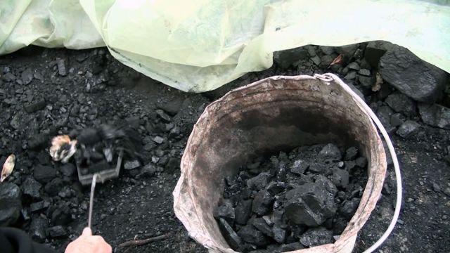 Ведро с углем. Уголь