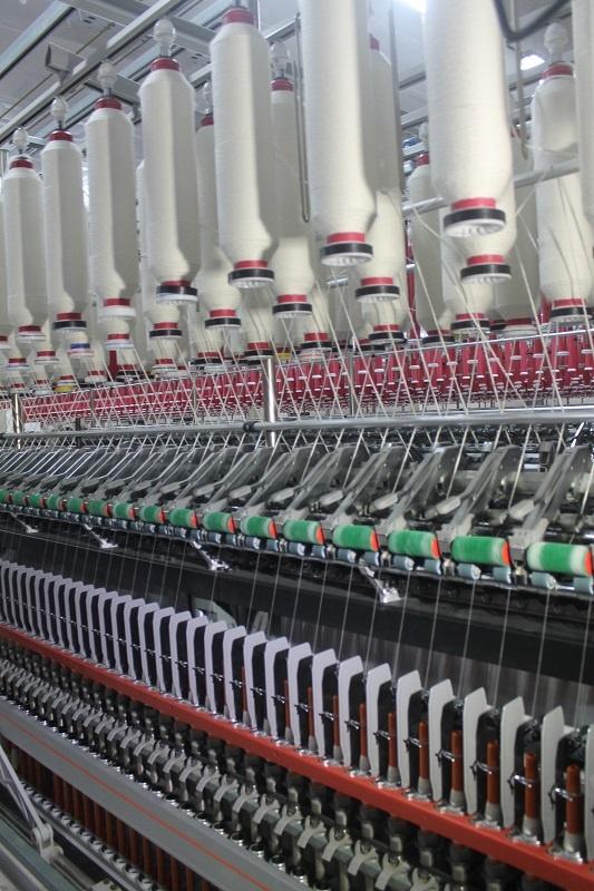Завод сможет производить более 6 тысяч тонн готовой продукции в год