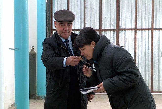 Южноказахстанские лекарственные травы пользуются спросом за рубежом