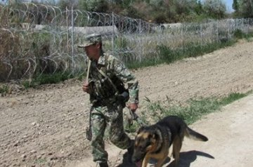 На казахстанско-узбекской границе произошло вооруженное нападение