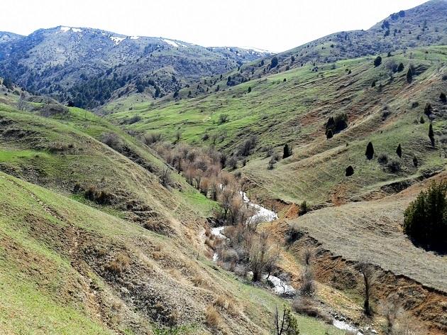Ущелье Киши Капчагай (район Сайрам су)