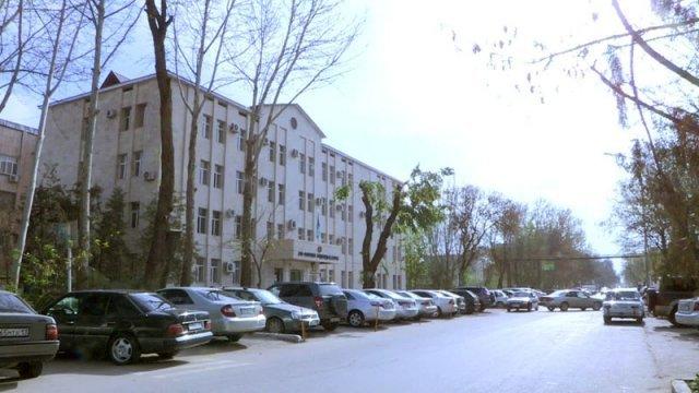 В Шымкенте вековые дубы не вписались в новый архитектурный облик здания