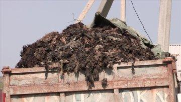 Скандал разразился около мусорного полигона в селе Мартобе