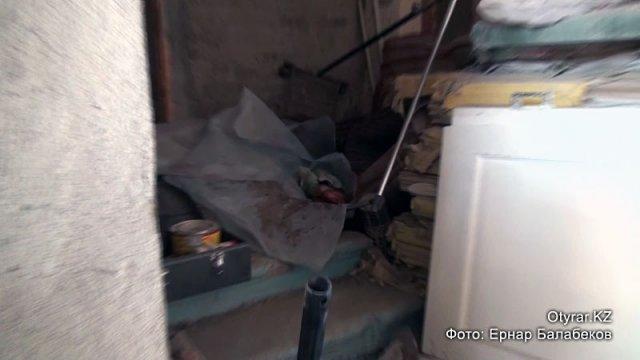 Во дворе медцентра в Шымкенте найден труп новорожденного ребенка