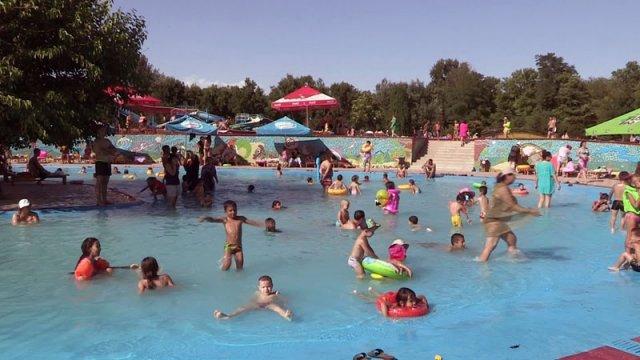 """Аквапарк """"Дельфин"""" - лучшее место отдыха в Шымкенте (PR)"""
