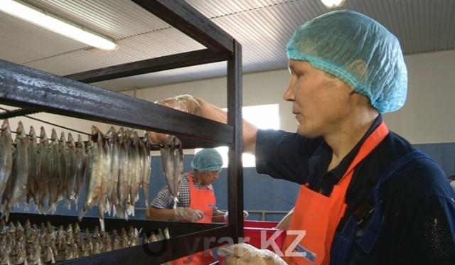 В месяц компания перерабатывает до 6 тонн рыбы