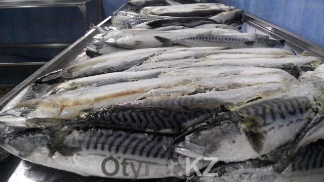 На первом этапе, брикеты с рыбой размораживают и обрабатывают, затем отправляют в посолочный цех
